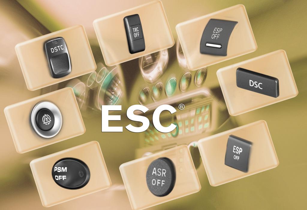 курсовой устойчивости esc Система курсовой устойчивости esc
