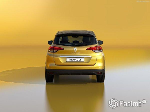 Вид сзади - Renault Scenic