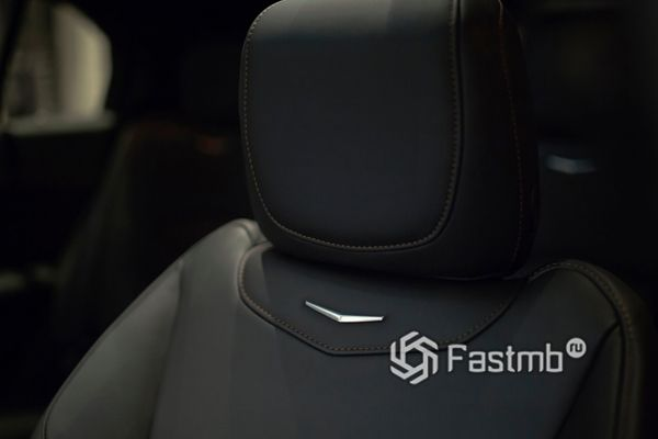 Подголовники передних сидений
