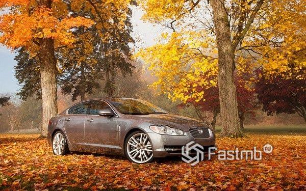 13 советов по эксплуатации автомобиля осенью