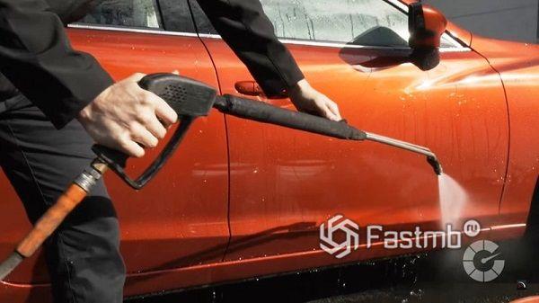 Обычная чистая вода - для отмытия птичьего помета с кузова машины