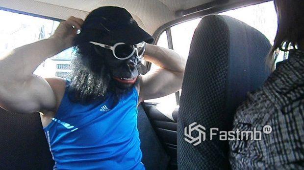 """""""горилла"""" на заднем сидении автомобиля"""