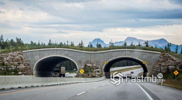 Канада. Трансканадская автомагистраль