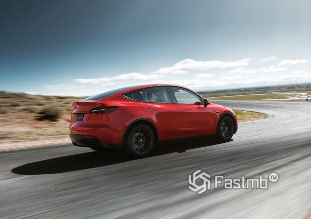 Задняя часть Tesla Model Y 2021