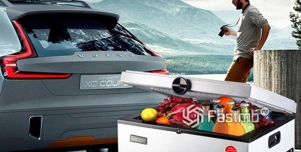 Автомобильные холодильники: ТОП-8 лучших моделей 2019 года