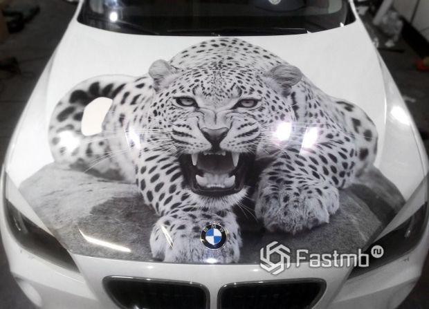 BMW X1, винилография на капоте