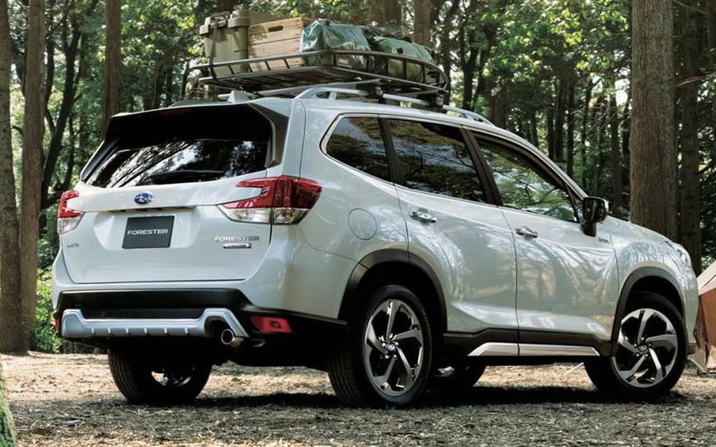 Новый Subaru Forester 2021 для России, вид сзади